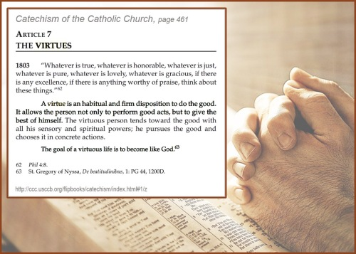 Virtue - Cath Catechism
