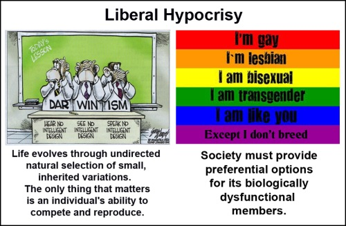Liberal Hypocrisy Darwin and Gay Rights