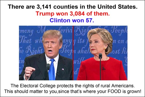popular-vote-vs-electoral-vote