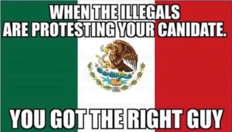 when-illegals-protest