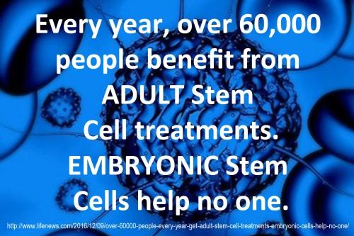 2016_12-10-adult-vs-embryonic-stem-cells
