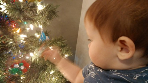 2016_12-23-alex-and-tree