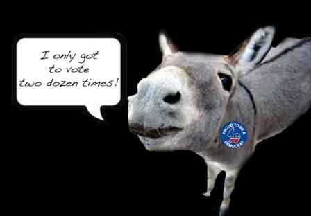 donkey-voter