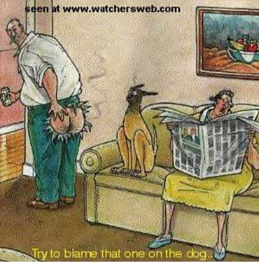 fart-blame-on-dog