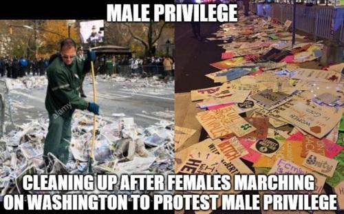 2017_01-23-male-privilege
