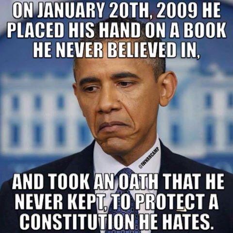 obama-never