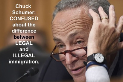 schumer-confused-about-illegal