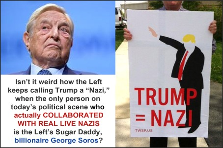 Image result for pics of left calling Trump a nazi