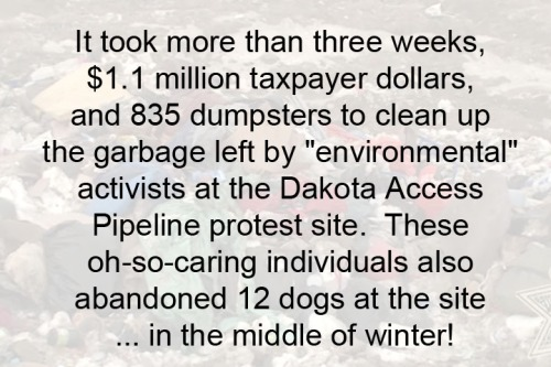 2017_03 Pipeline protest clean-up