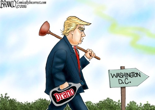 2016_12 Trump drain the swamp Branco