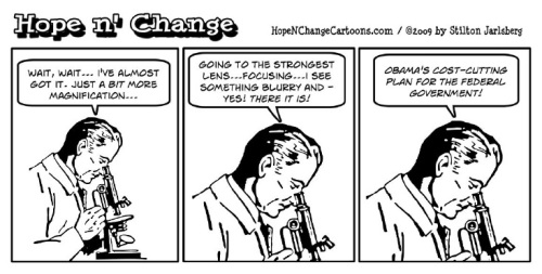 2009 Stilton - Obama's cost cutting plan
