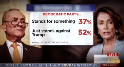 2017_07 Dem Party poll