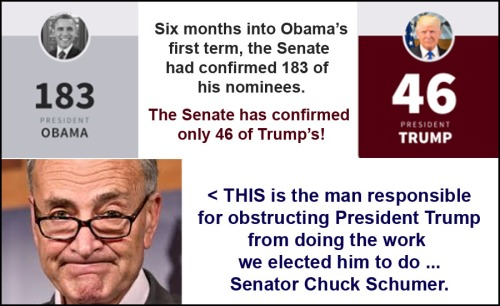 2017_07 Schumer obstruction