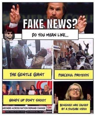 MEDIA fake news examples