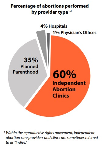 2017 Percent of abortions by provider type