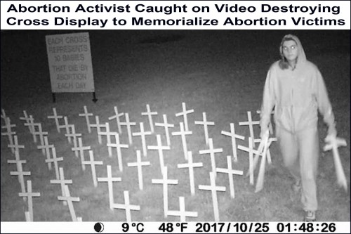2017_10 25 Vandalizing pro-life display