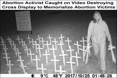 2017_10 25 Vandalizing pro-life display