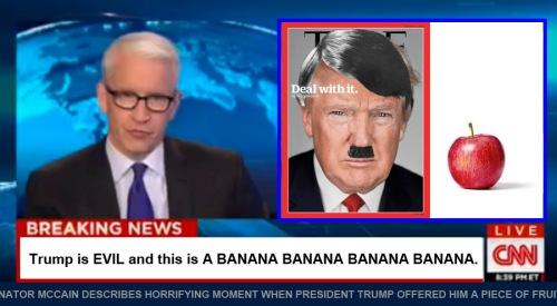 CNN BANANA