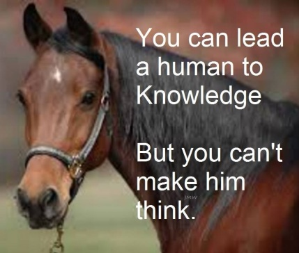 Horse You can lead a human