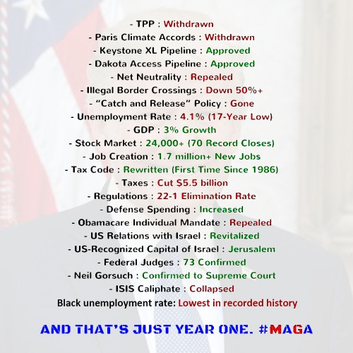 2017_12 Trump Year One