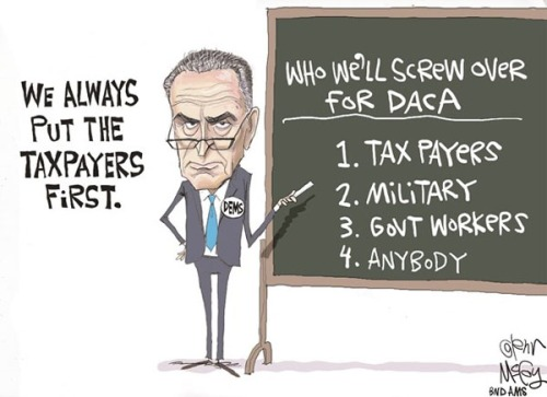 2018_01 22 Schumer screw taxpayers toon