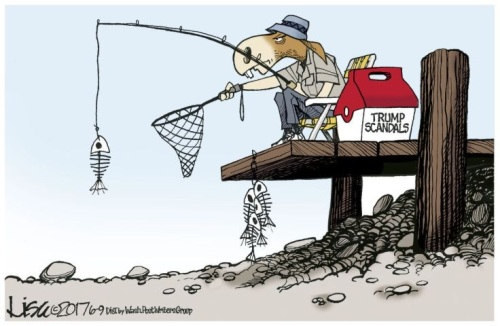 2017 Trump scandal fishing by Lisa