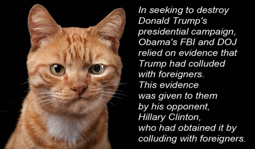 2018_02 Colluding with foreigners cat