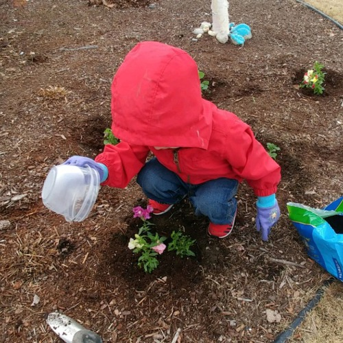 2018_05 16 Bootz gardening