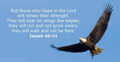 2018_06 23 Isaiah eagle soar