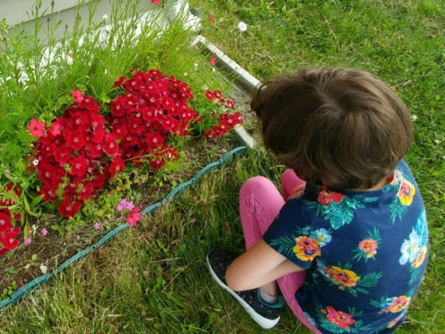 2018_07 09 Alessia saying bye to flowers