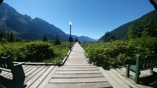 2018_08 05 Estuary boardwalk in Stewart BC