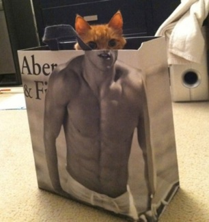 2018_09 04 CAT Abercrombie and Fitch bag