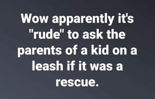 2018_11 23 Rescue leash