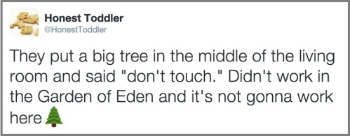 2018_12 05 Honest toddler