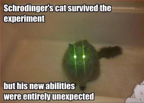 2018_12 20 CAT Schrodinger's