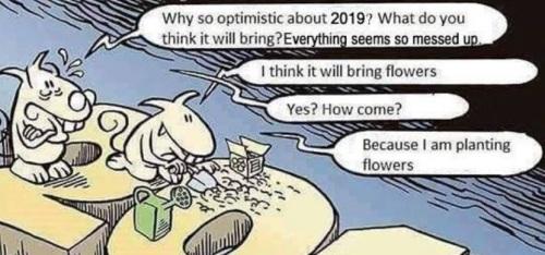 2019_01 03 planting flowers