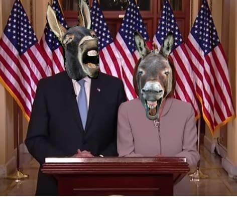 2019_01 09 chuck nancy donkeys