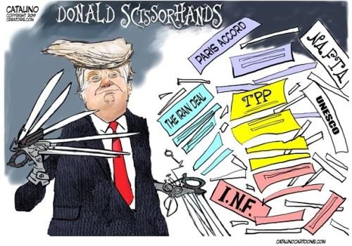 2019_02 09 Donald Scissorhands