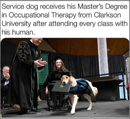 Service dog grad