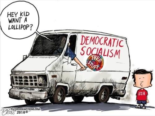 SOCIALISM white van toon