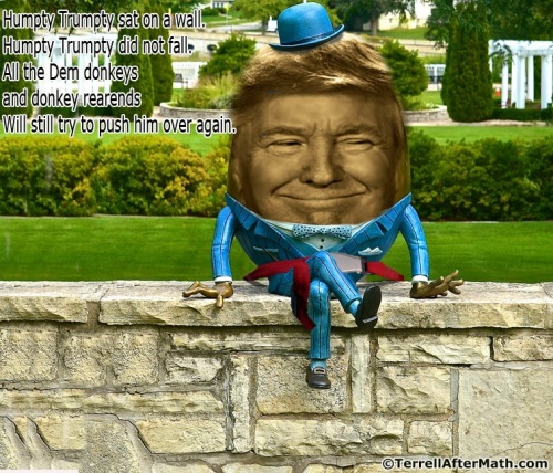 2019_03 30 Trump on wall by Terrell