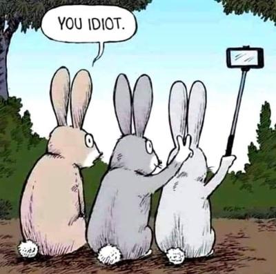 Bunny ears idiot