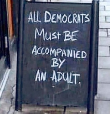 Democrats accompanied by adult