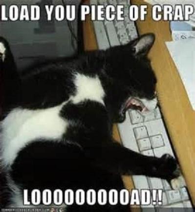 CAT LOAD