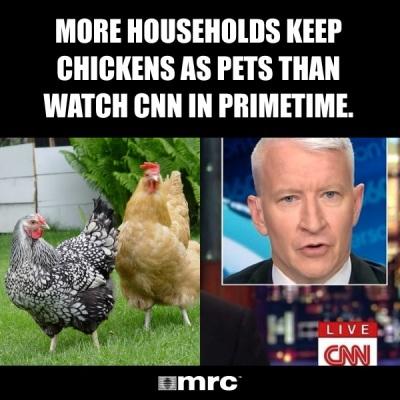 chickes vs cnn