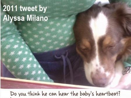 Milano tweet