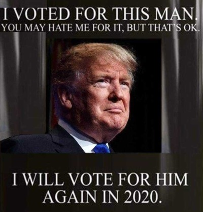 Trump I voted for him