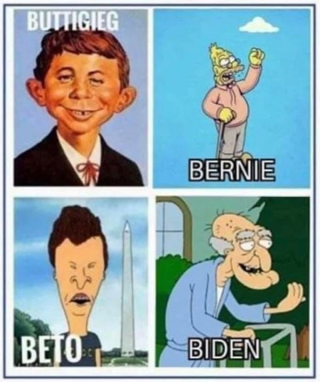 202 cartoon candidates