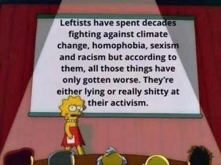 democrats bad at activism