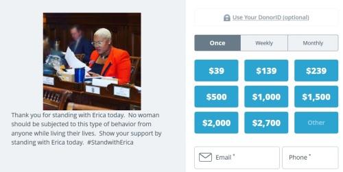 donate to erica